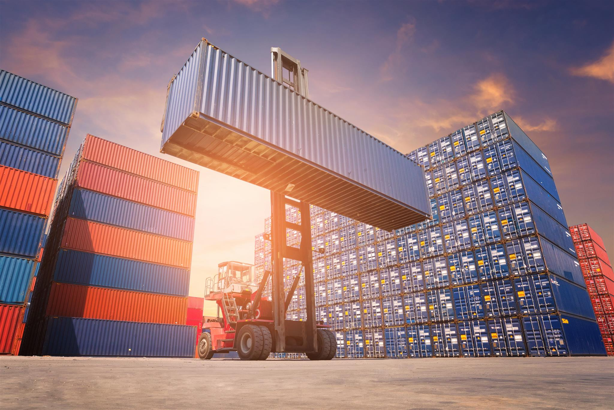 Container & Specialized Equipment